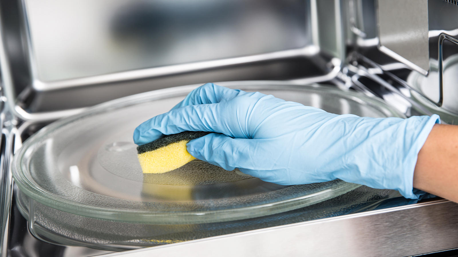 Placing a sponge in a microwave to disinfect it.