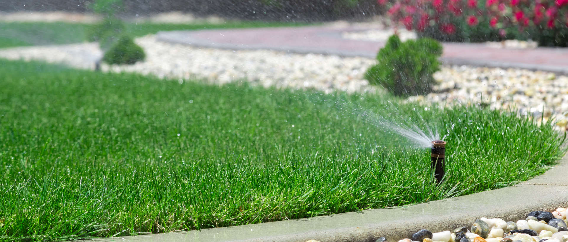 Sprinklers watering a yard.