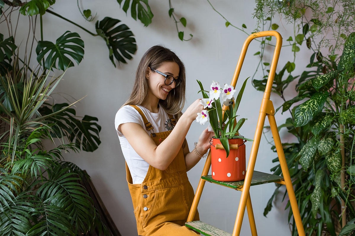A woman inspecting the foliage and flowers of one of her many houseplants.